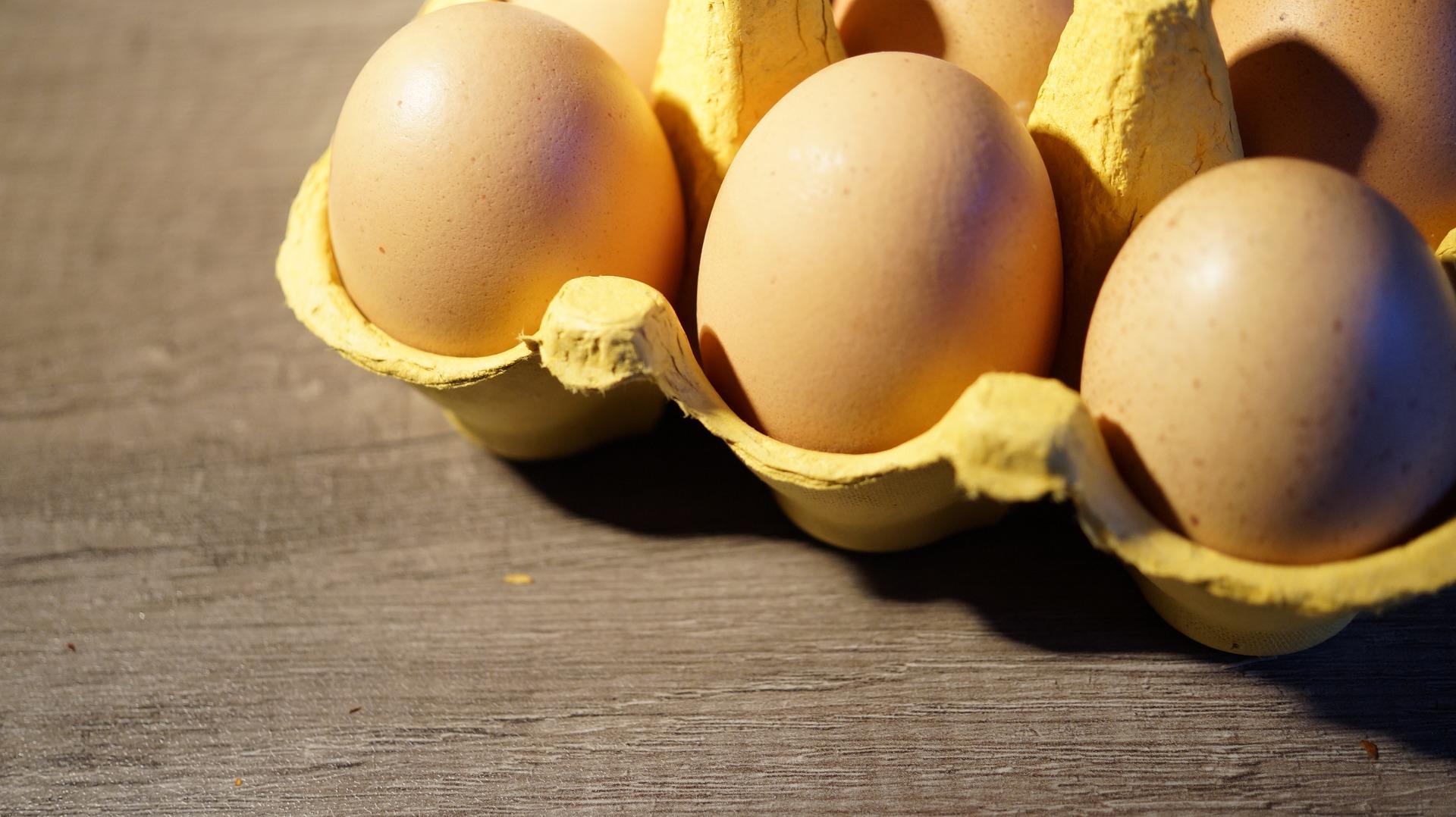[#AgriGoodNews] Un pic de consommation d'œufs pendant le coronavirus : la filière réponde à la demande