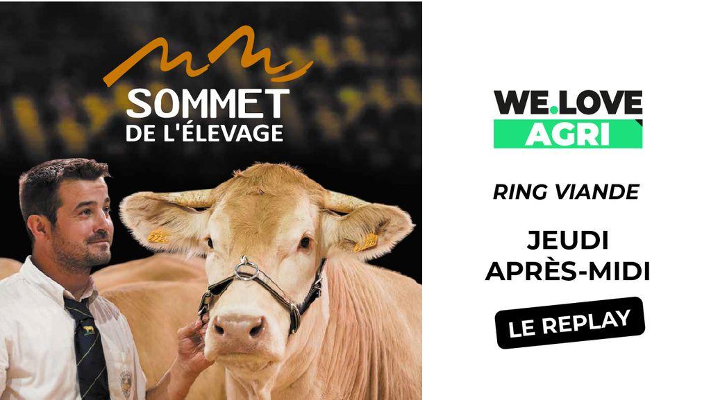 03 Octobre : Sommet de l'élevage - Ring bovins viande - Après-midi