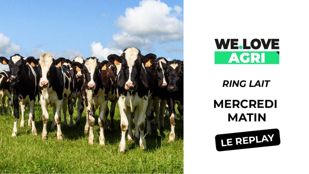 02 Octobre : Sommet de l'élevage - Ring Lait - Matinée