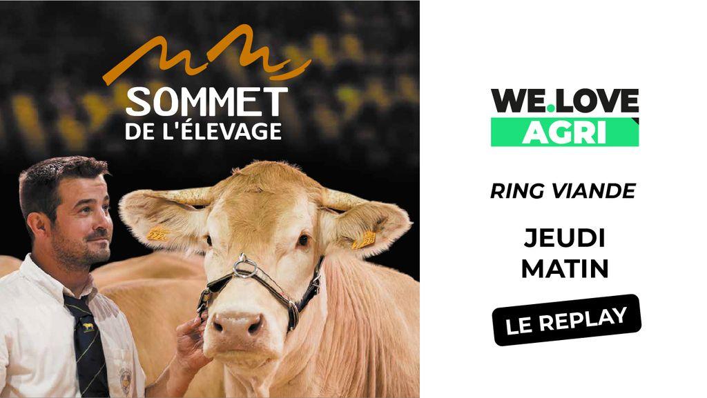 03 Octobre : Sommet de l'élevage - Ring bovins viande- Matinée